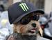 Пёс-россиянин вступил в мотоклуб