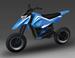 В Сколково будут собирать мотоциклы?